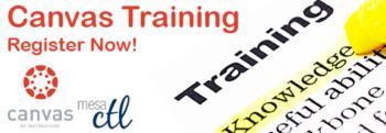 Canvas Training Header